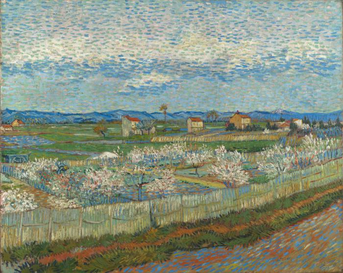 La Crau with Peach Trees in Blossom 1889