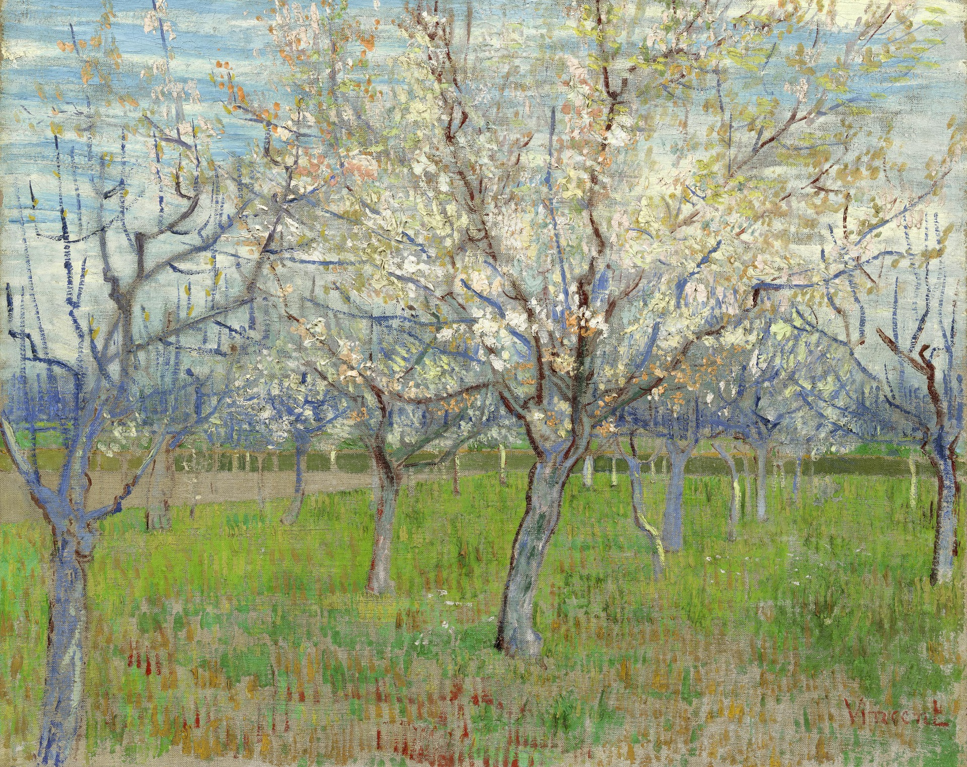 Orchard with Blossoming Apricot Trees 1888