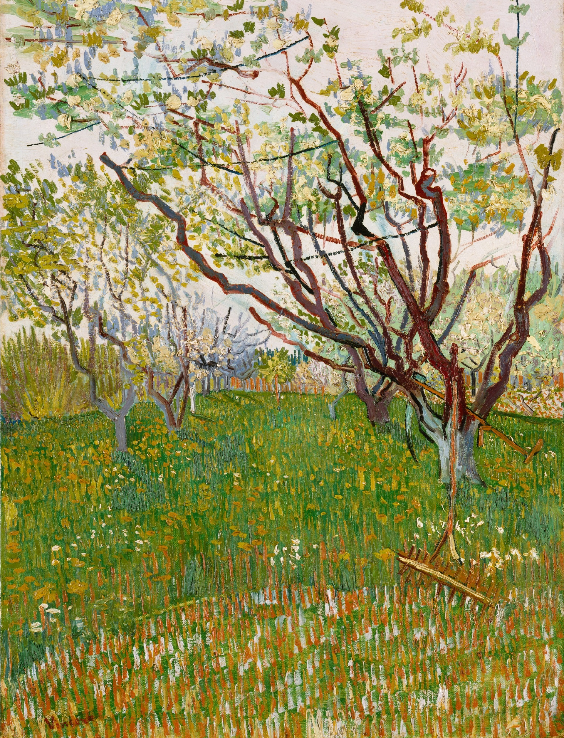Orchard in Blossom 1888