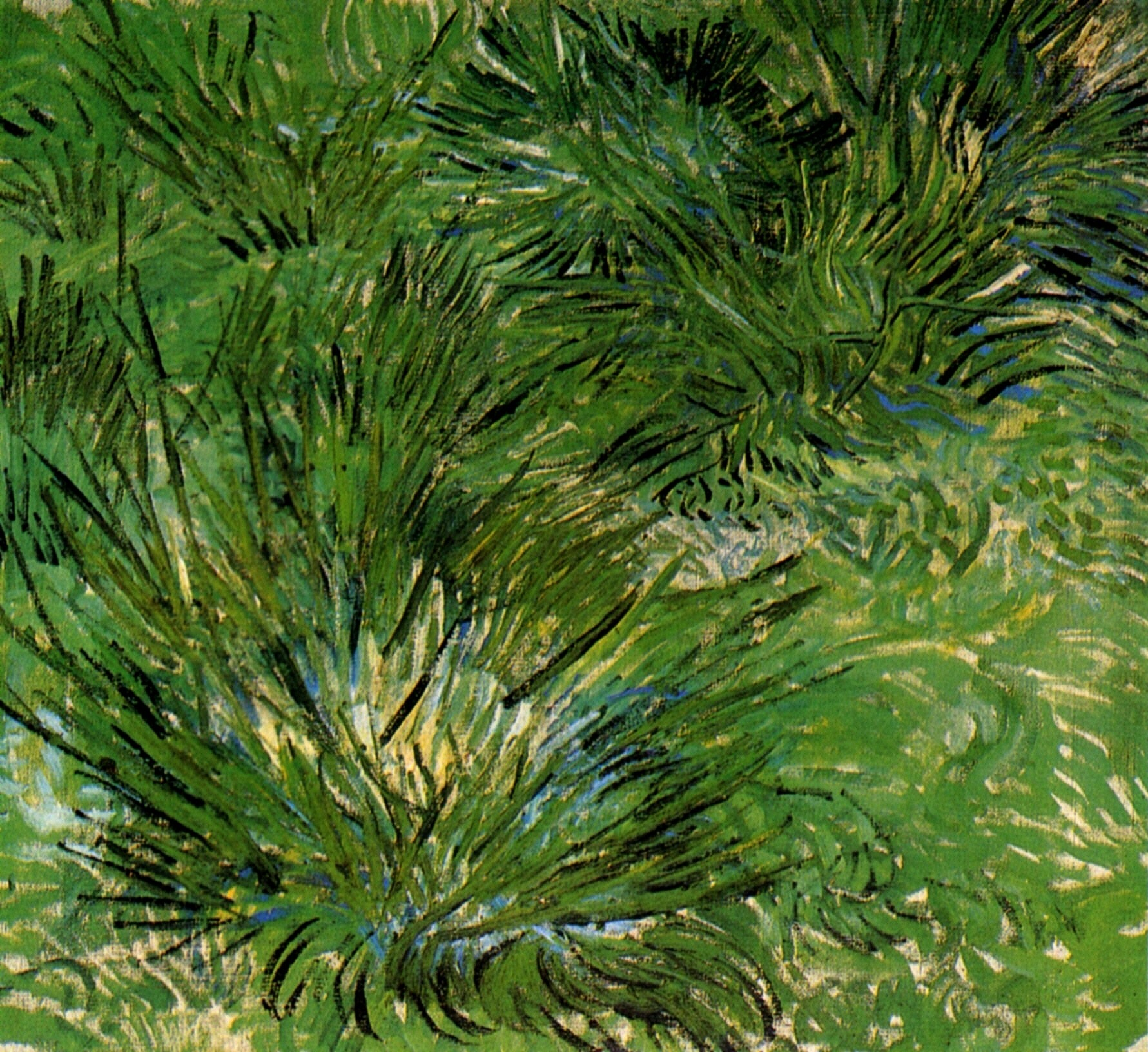 Clumps of Grass 1889