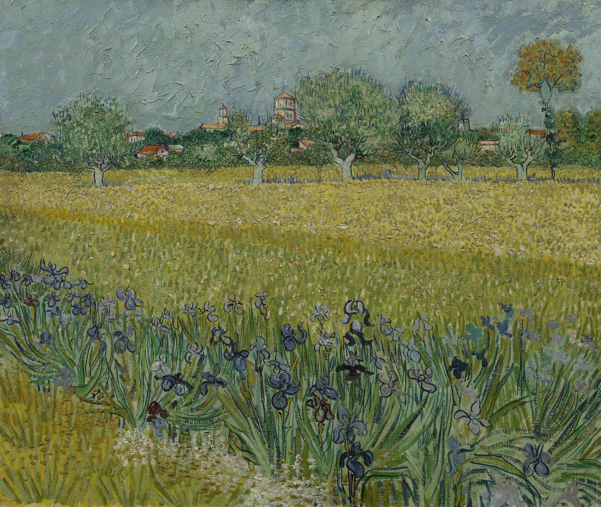 View of Arles with Irises in the Foreground 1888