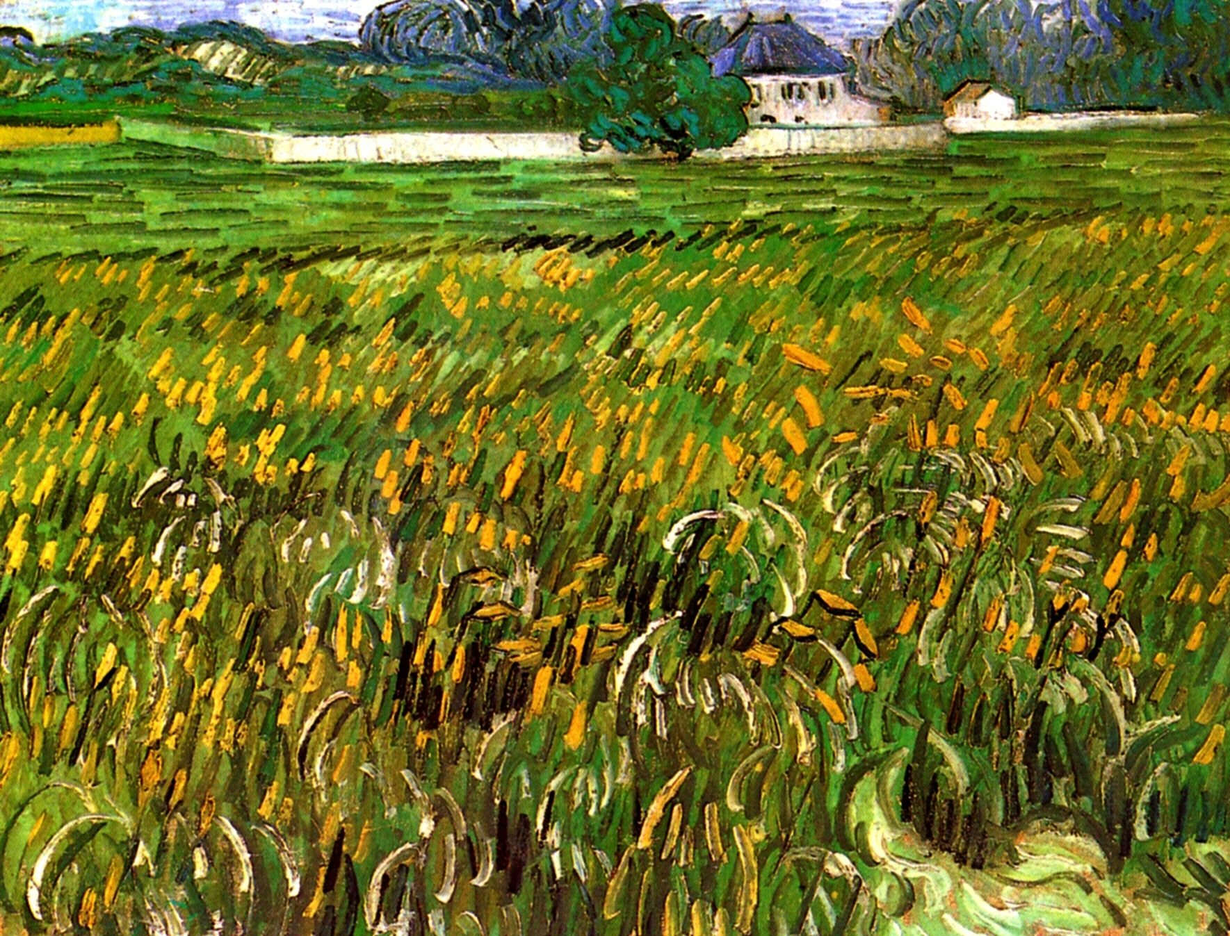 Wheat Field at Auvers with White House 1890