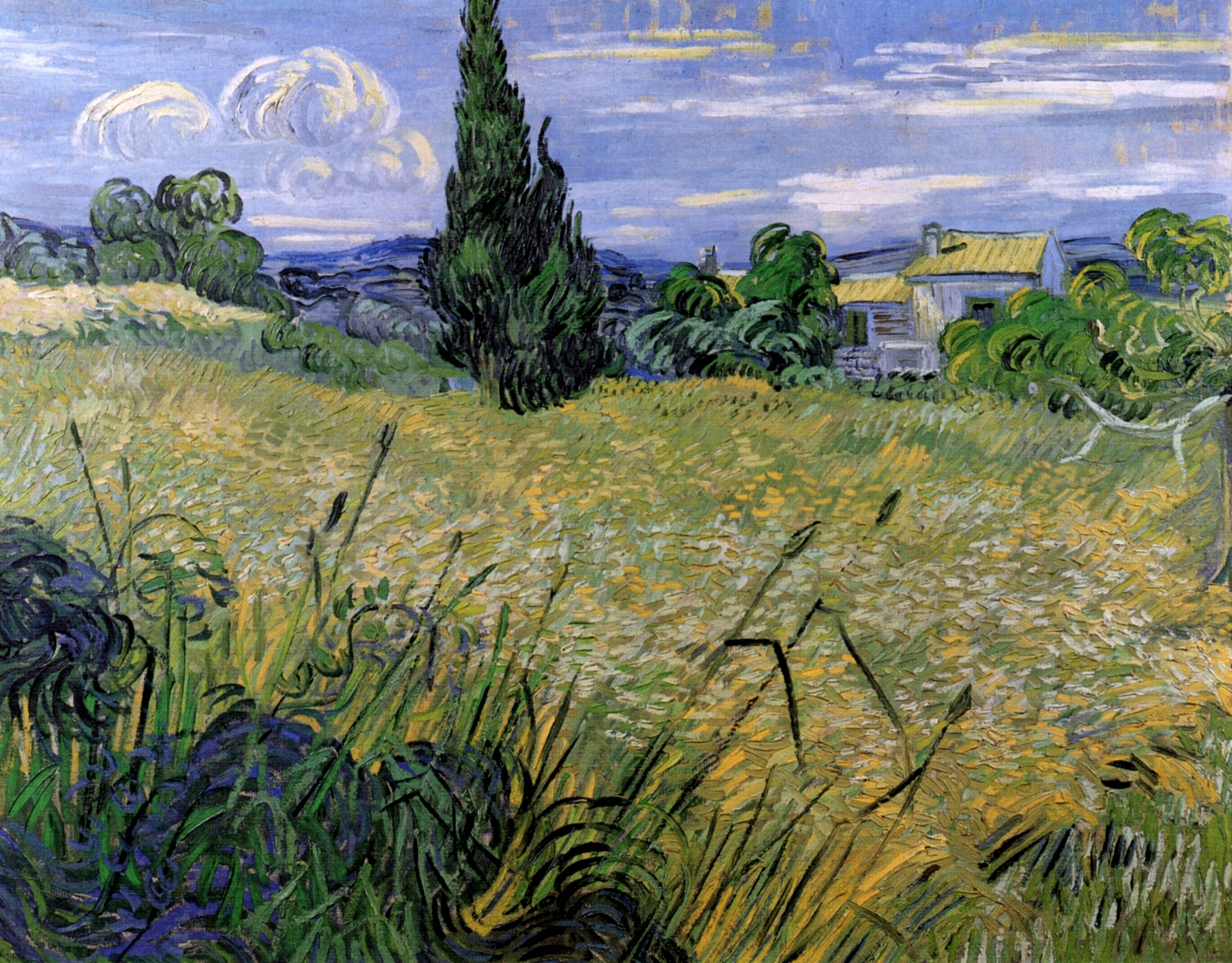 Green Wheat Field with Cypress 1889