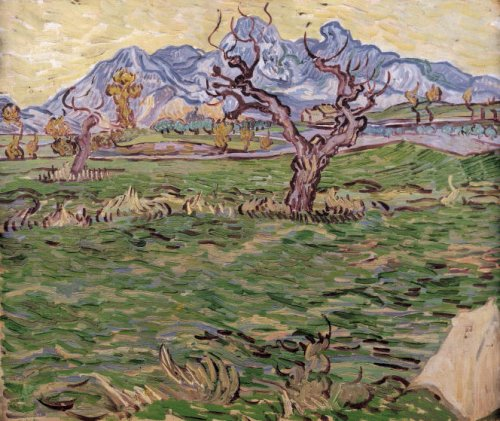 Landscape with Olive Tree and Mountains in the Background 1889